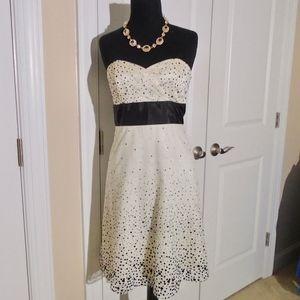 WHITE HOUSE/BM Strapless Dot Tulle Dress 2